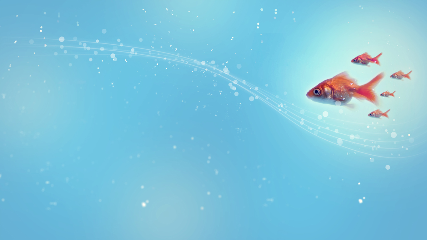 Water bubbles and Gold fish HD Gold fish wallpapers Blue water and 1366x768