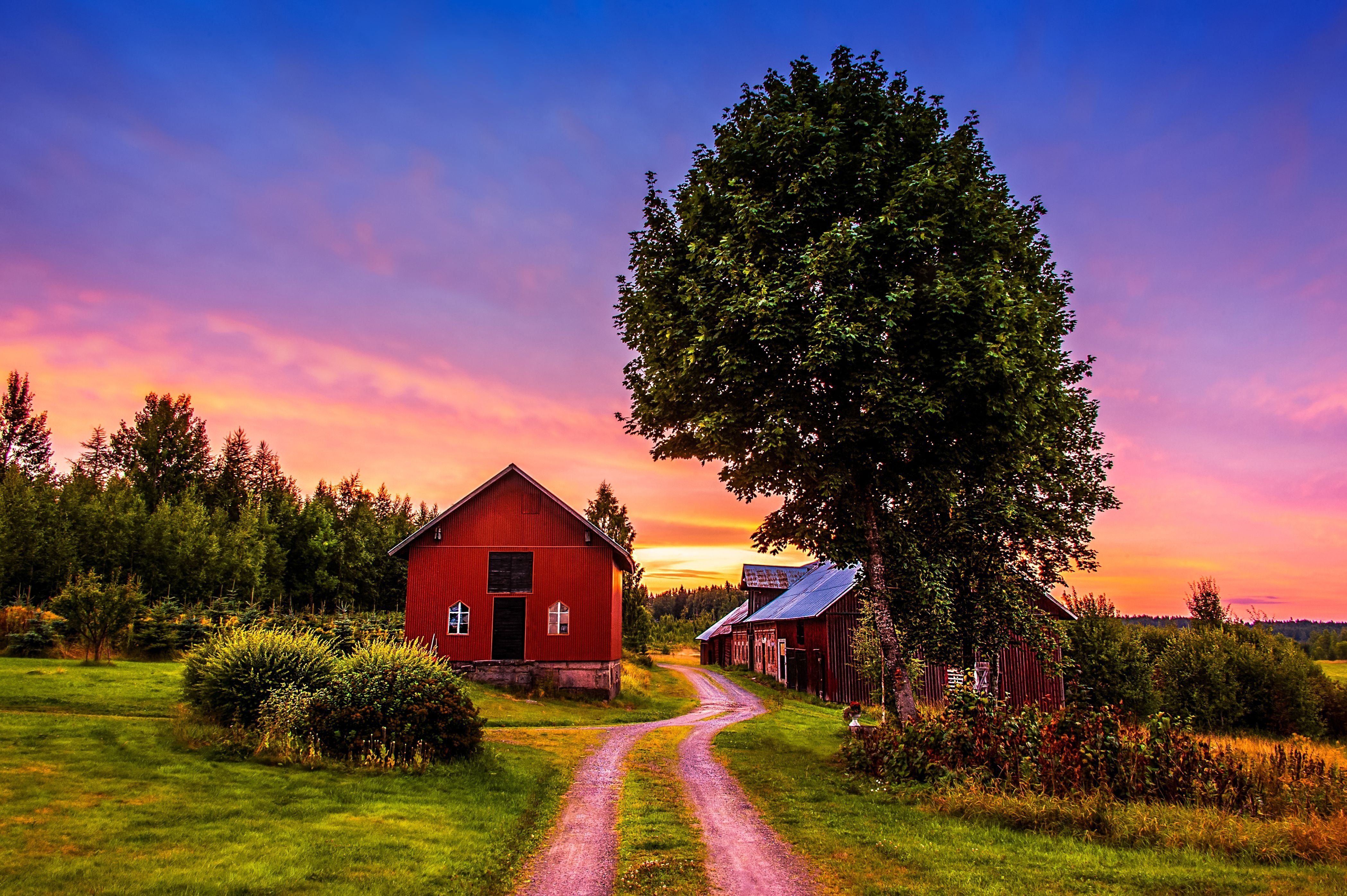 sunset trees road home landscape rustic farm house 4196x2792