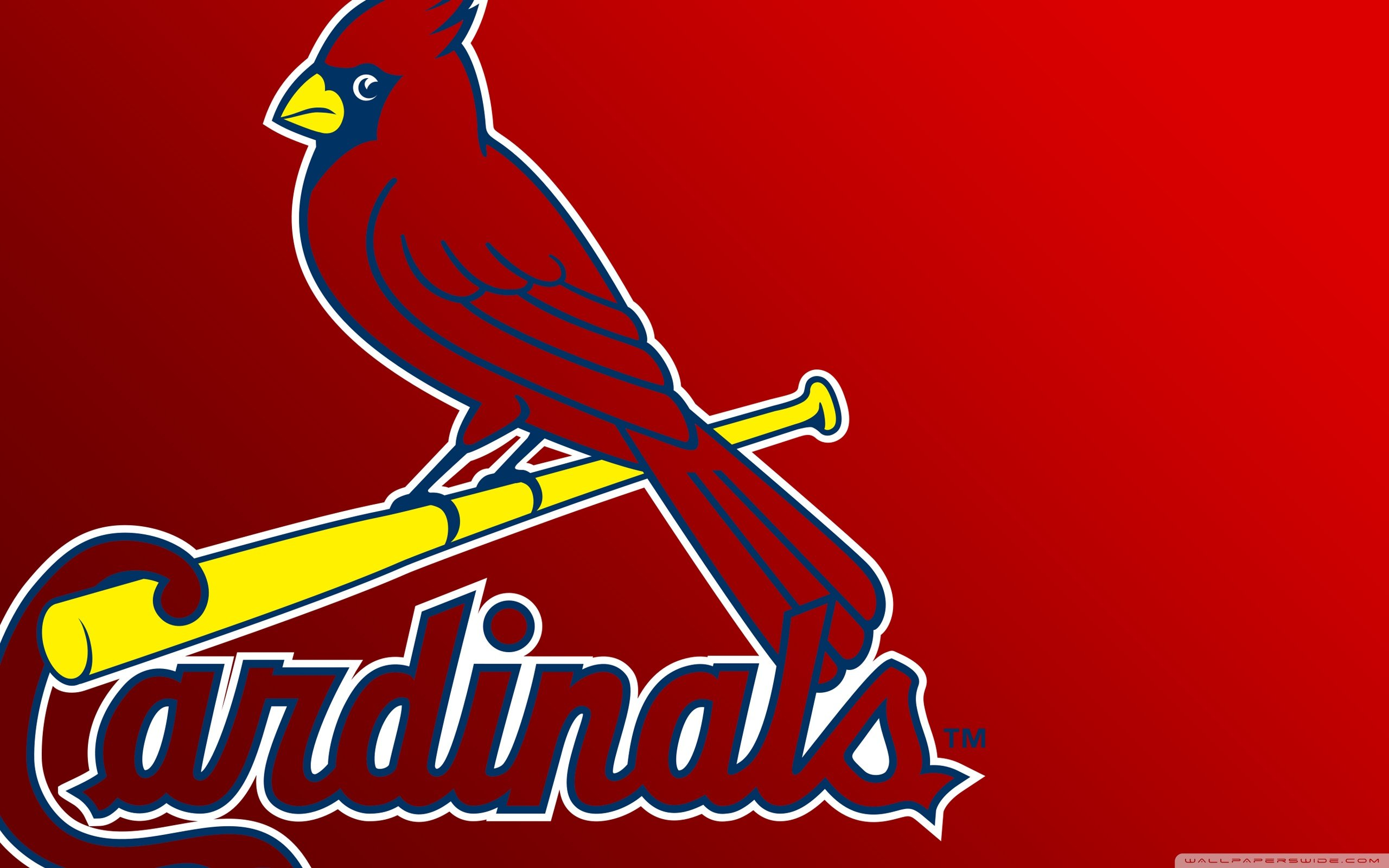 StLouis Cardinals Wallpapers HD Full HD Pictures 2560x1600