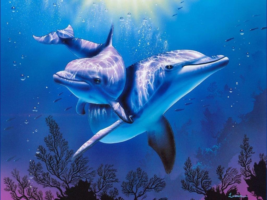 3D Desktop Wallpaper Dolphins   wwwwallpapers in hdcom 1024x768