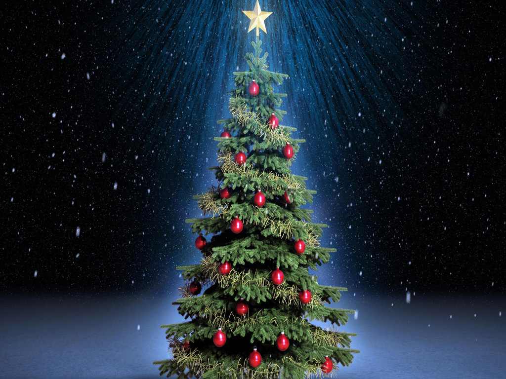 Beautiful christmas tree wallpaper - Free Download Christmas Tree Hd Wallpapers For Ipad Tips And News