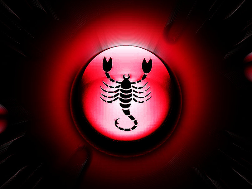 Red scorpion wallpaper - photo#45