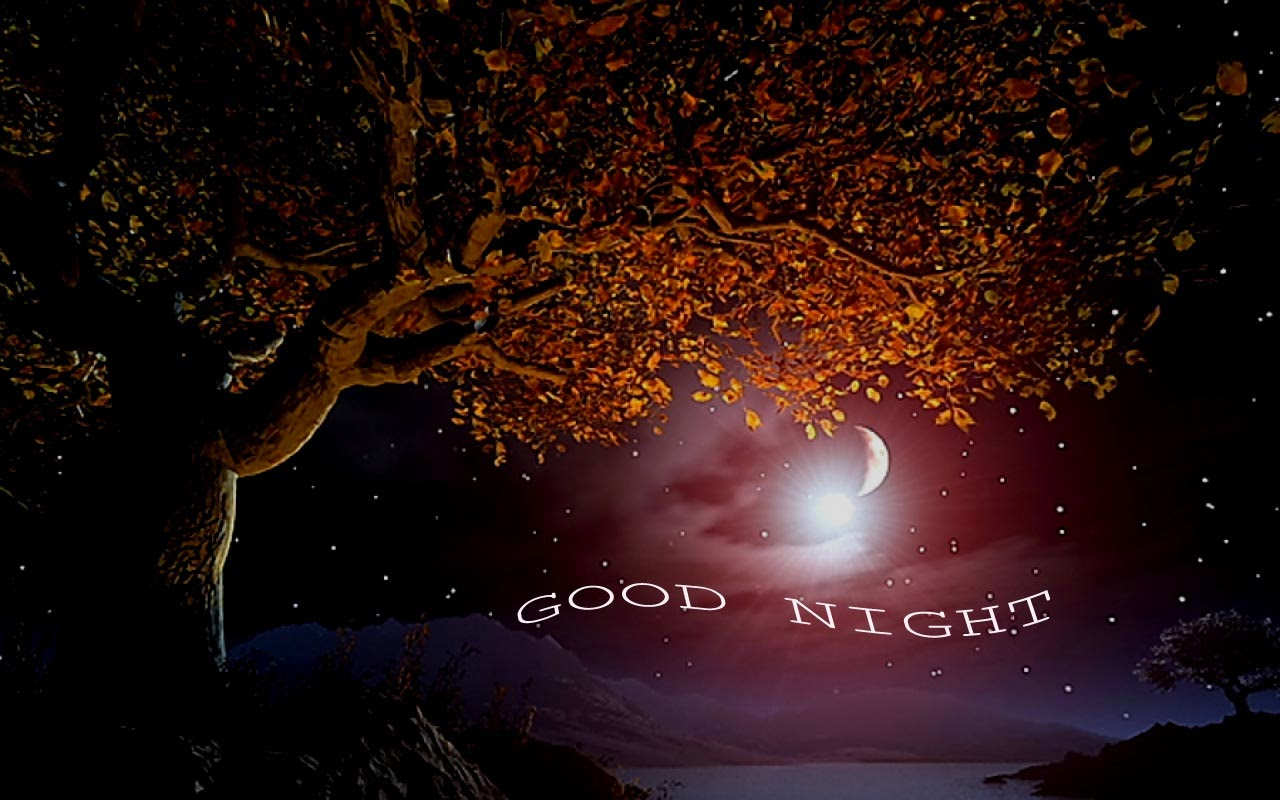 Good Night Wallpaper Images Wallpapersafari