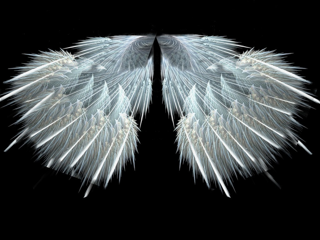 White Angels 12 Background   Hivewallpapercom 1024x768