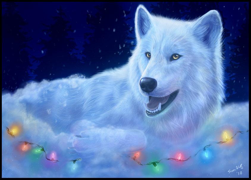 Wolf Christmas Wallpaper Wallpapersafari