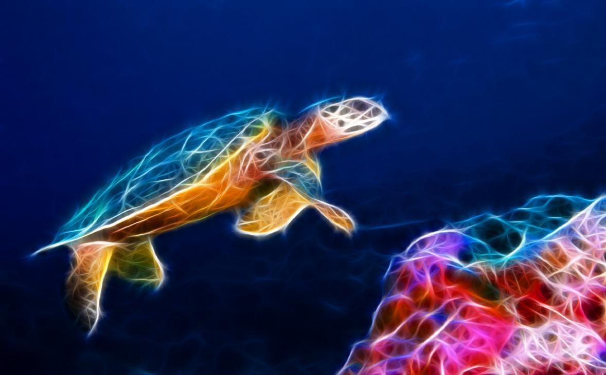 Download Sea Turtle Animated Wallpaper DesktopAnimatedcom 1178x730