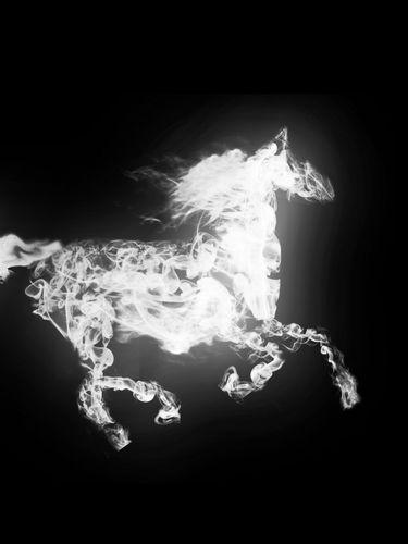 Pin Smoking Horse Wallpaper Lotz Of Wallpapers 375x500