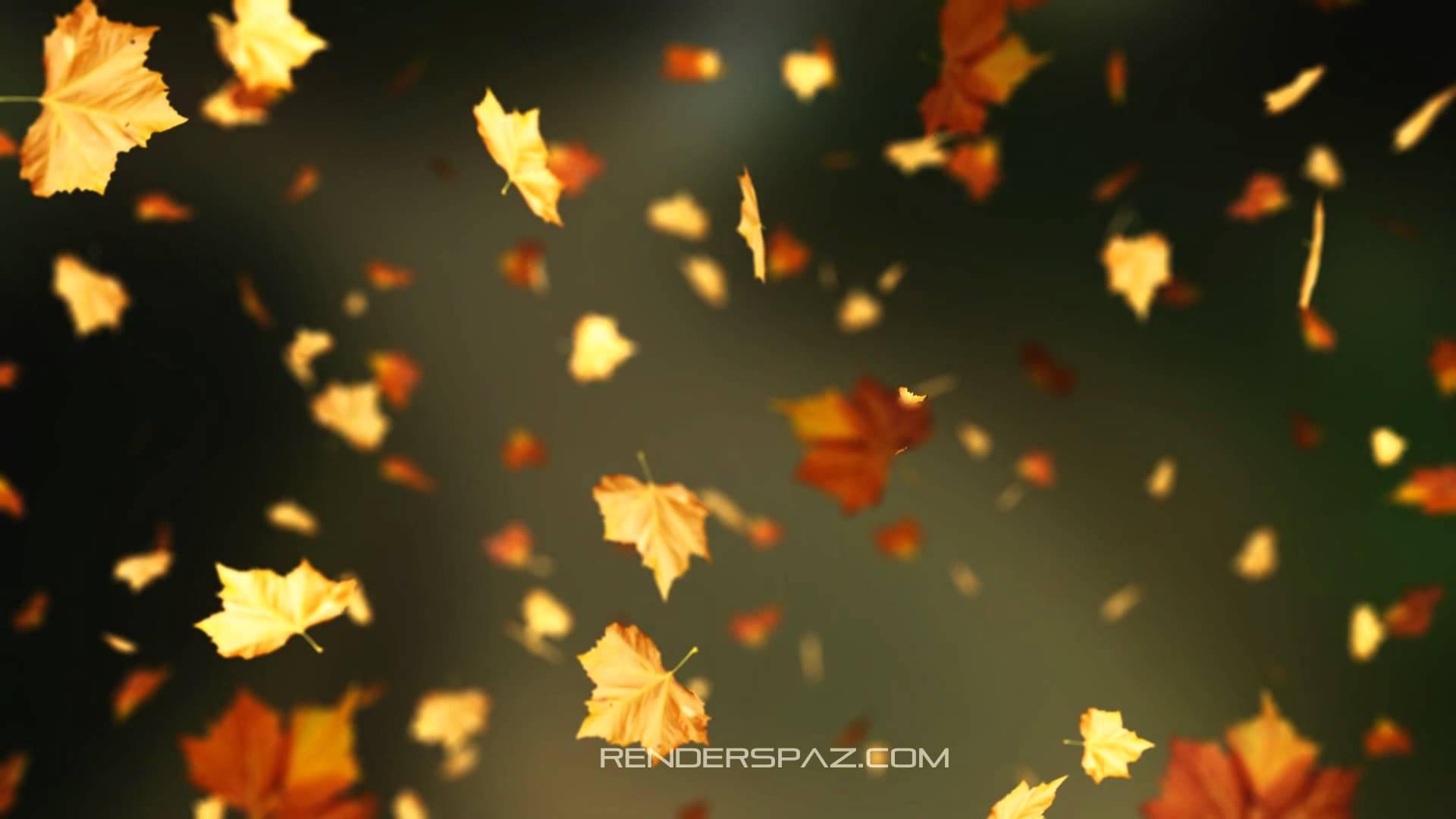 Fall Animated Wallpaper Windows 8 1920x1080