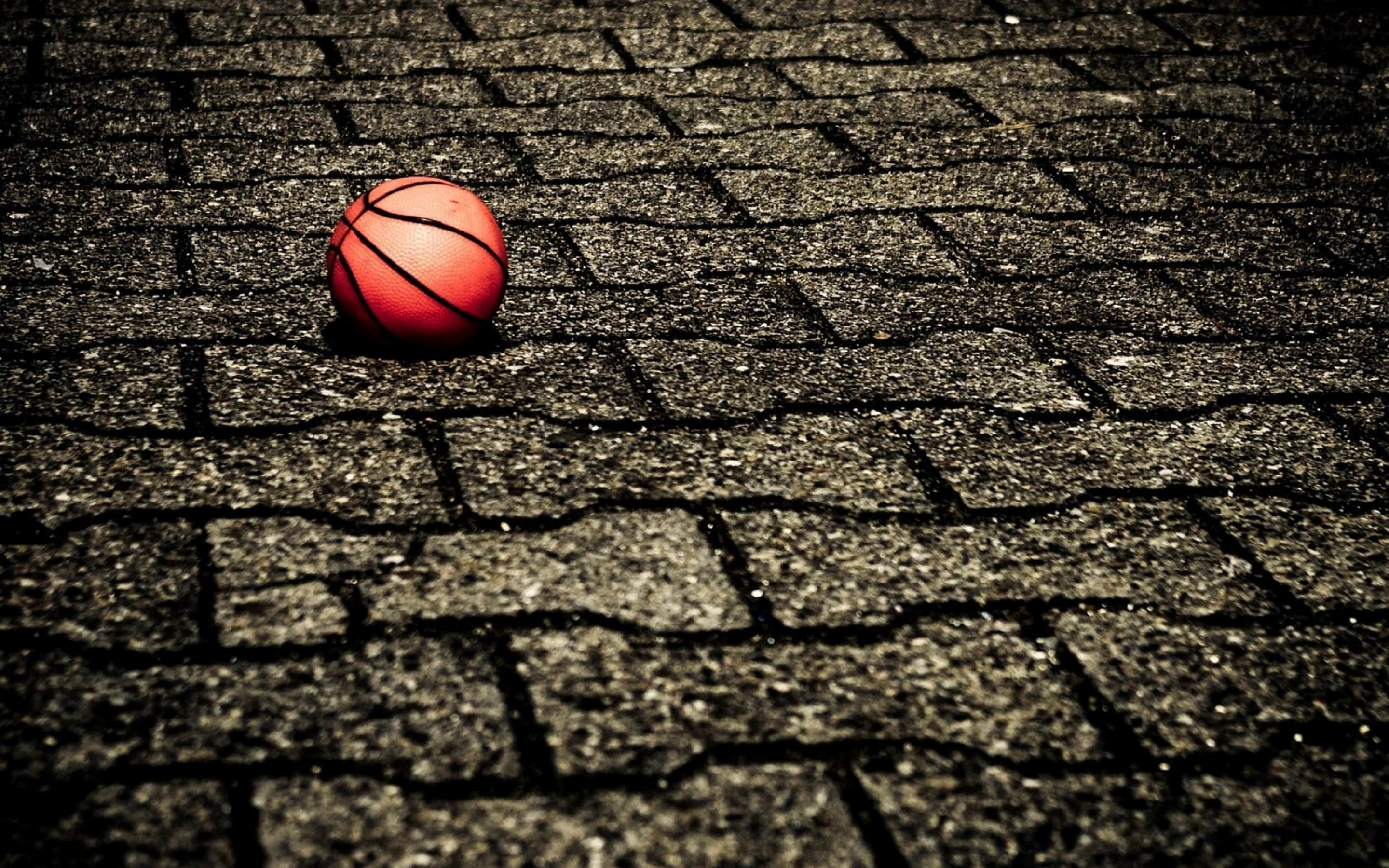 25 Basketball Wallpapers Backgrounds ImagesPictures 2880x1800