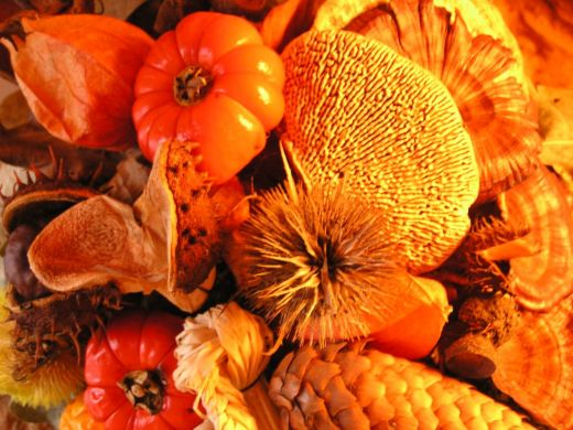 Thanksgiving wallpapers screensavers and pictures 520x390