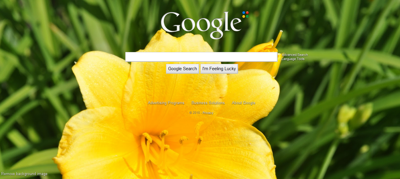 Google Adds Background Image Support To Its Homepage I Find a Sweet 1347x602