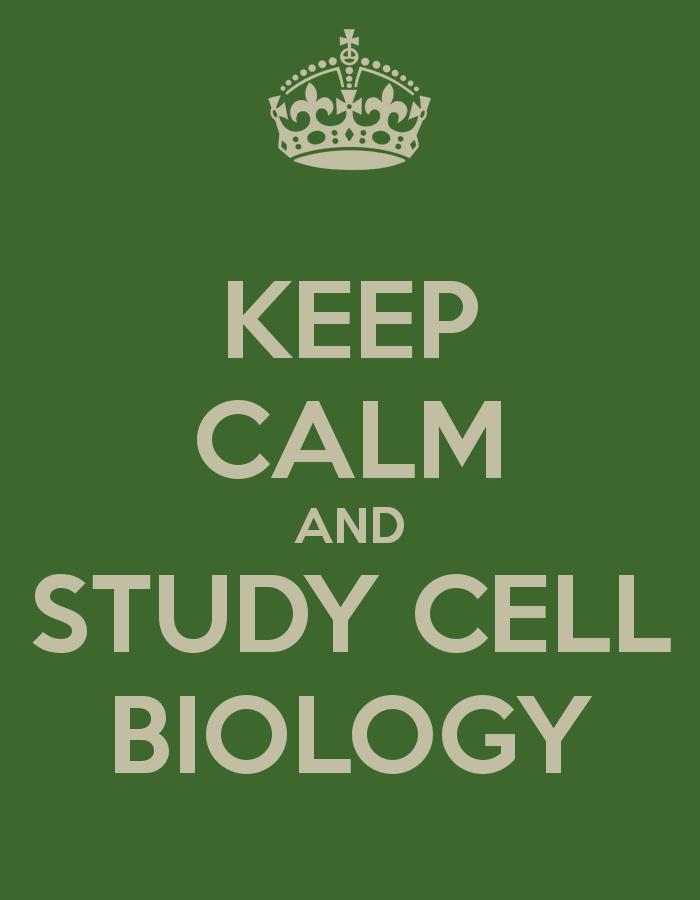Cell Biology Wallpaper Widescreen wallpaper 700x900