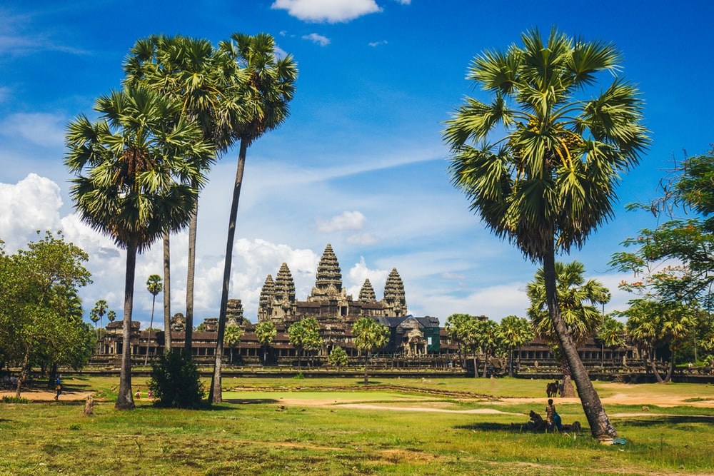 100 Cambodia Pictures Download Images on Unsplash 1000x667