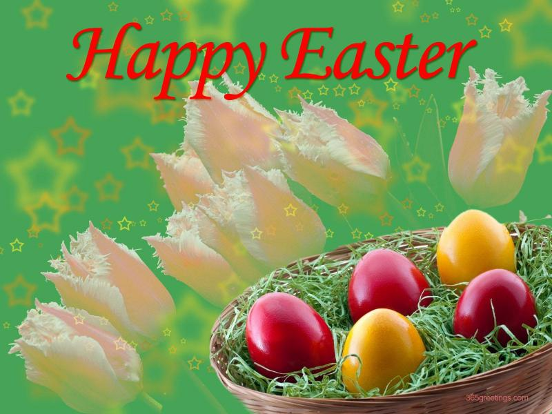 wallpaper365greetingscomholidayeastersnoopy easter baskethtml 800x600
