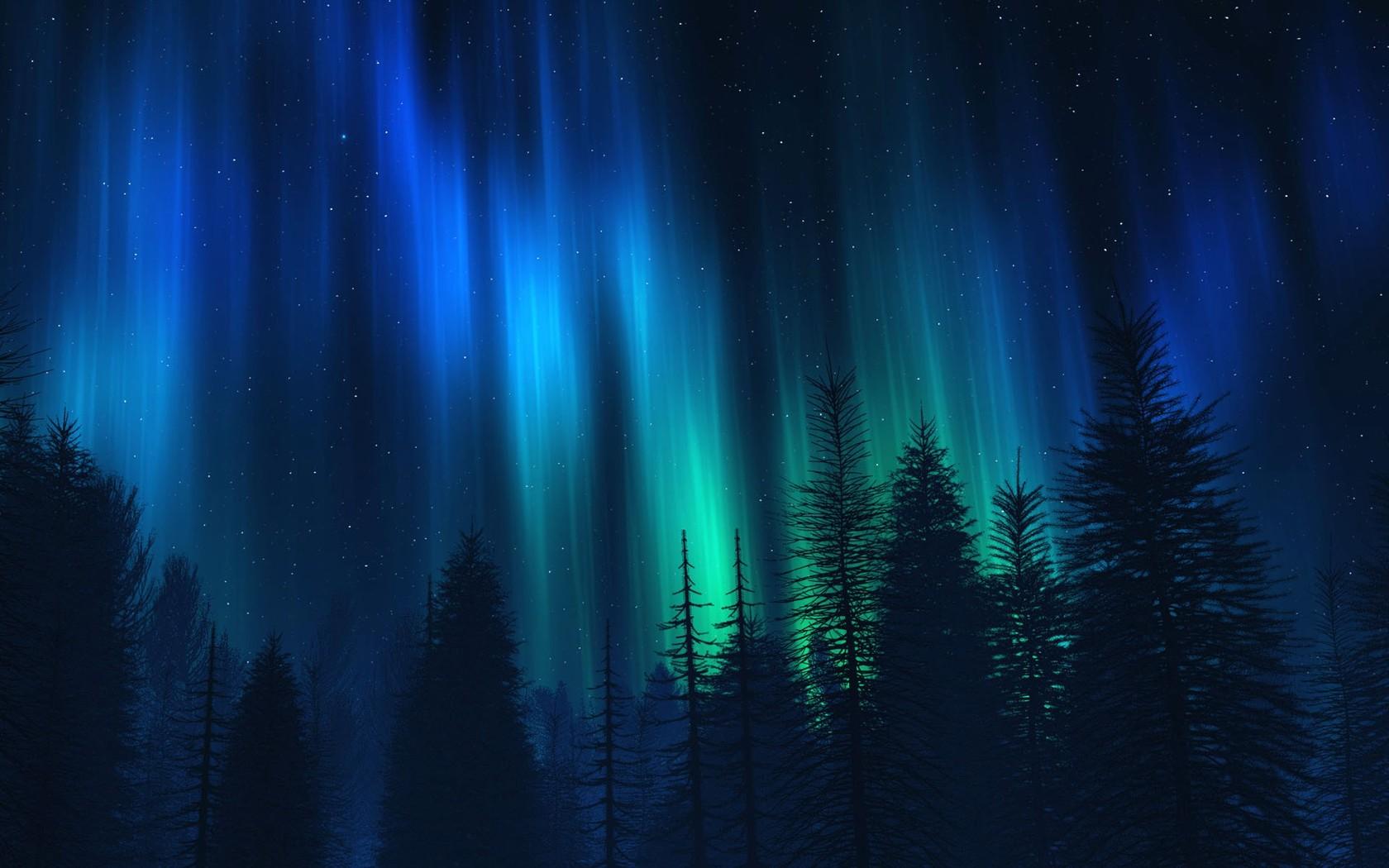 Northern lights over fir trees Widescreen Wallpaper - #3416
