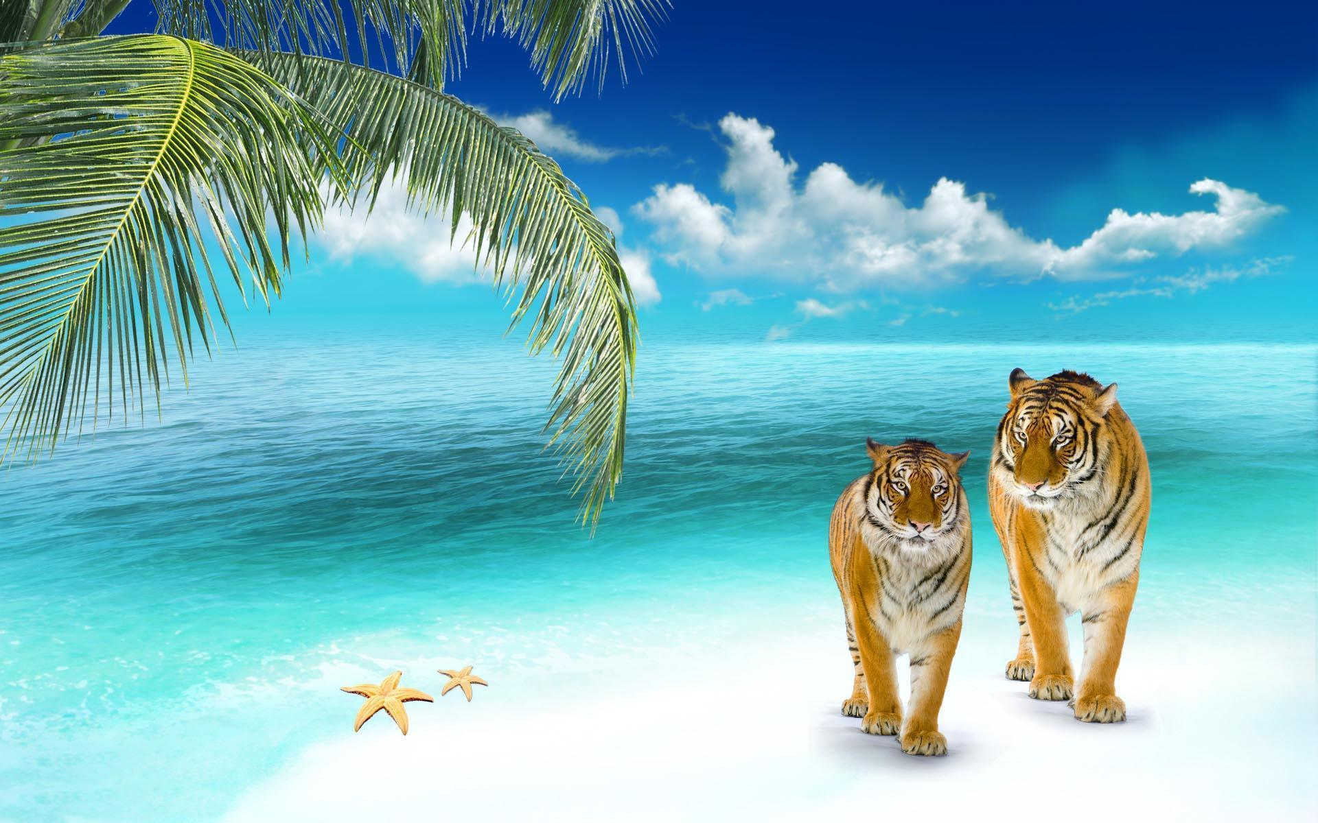 3D Beach Wallpapers 1920x1200
