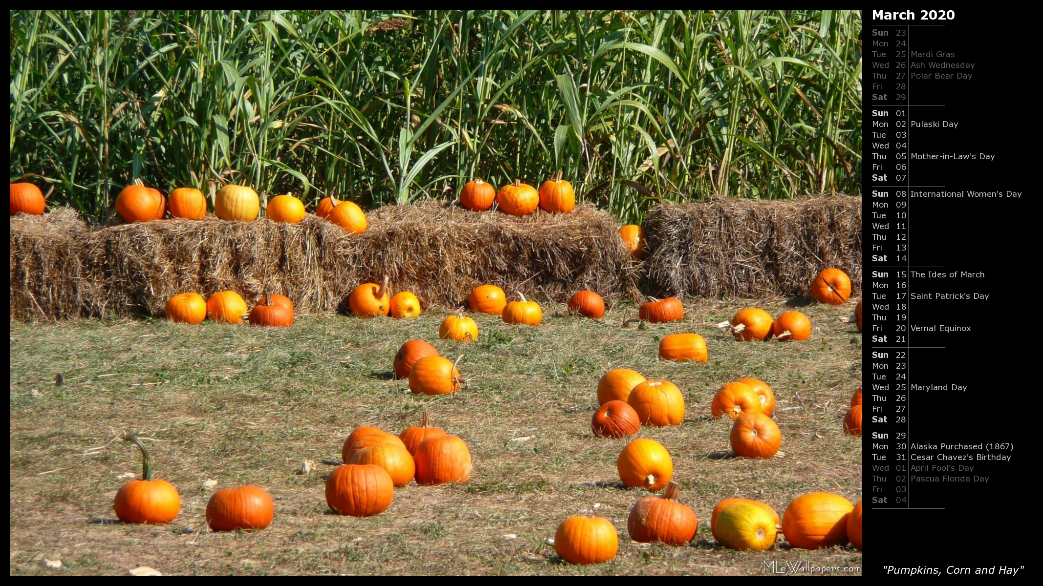 MLeWallpaperscom   Pumpkins Corn and Hay Calendar 2134x1200