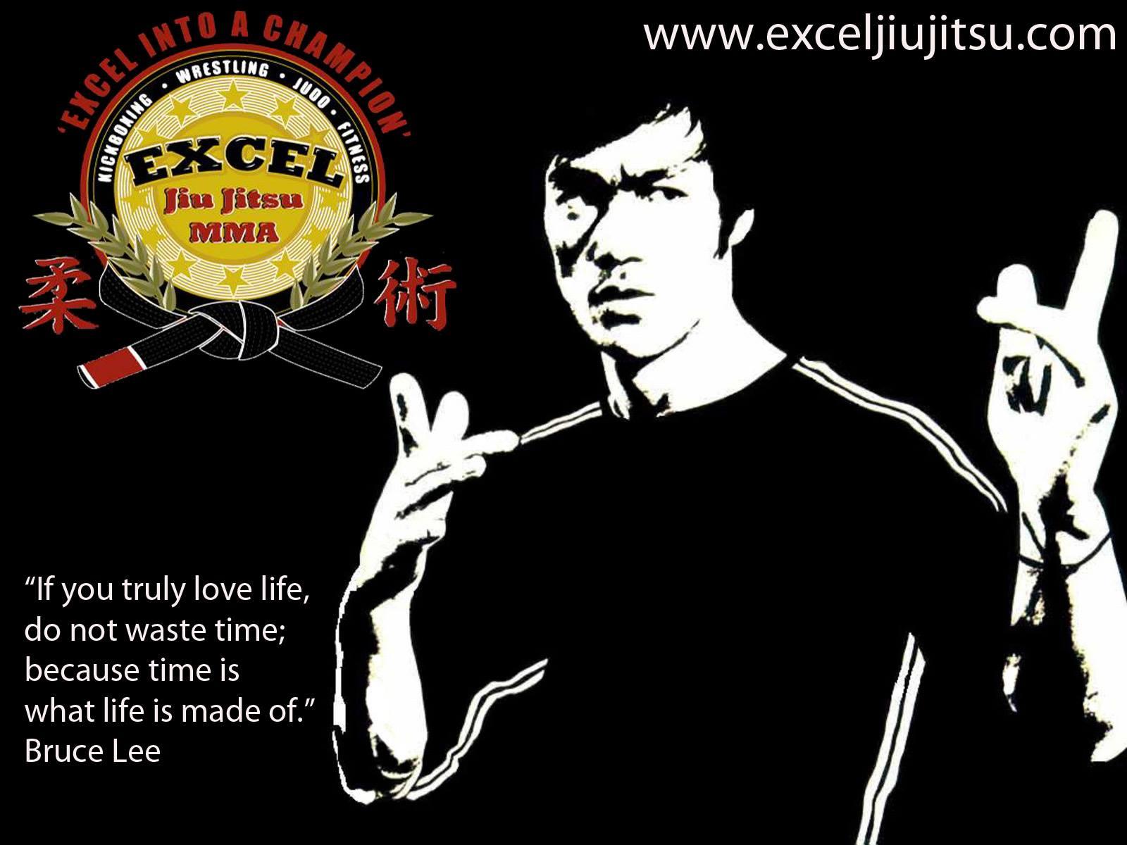 49 Gracie Jiu Jitsu Wallpaper On Wallpapersafari
