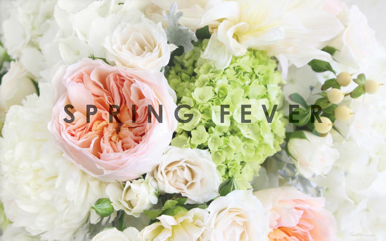 Think Spring Wallpaper Wallpapersafari