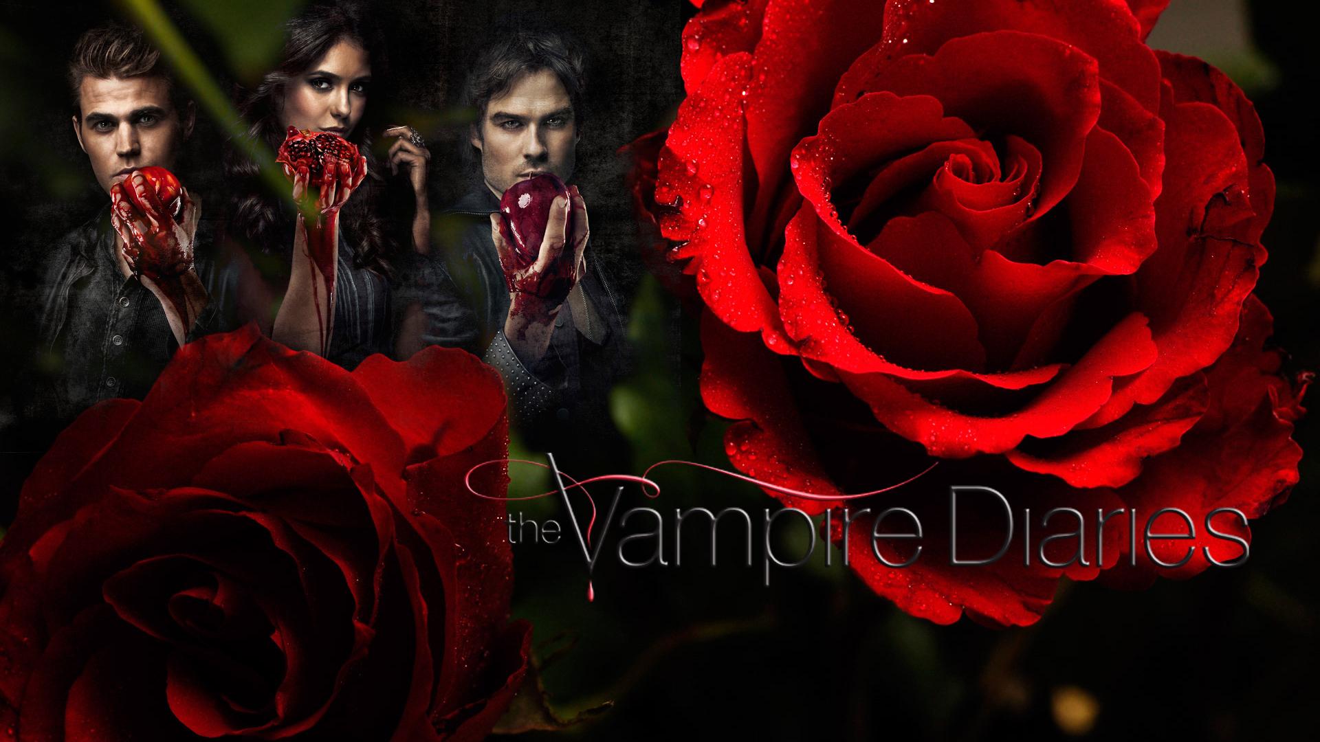 Vampire Diaries All Seasons Wallpapers Wallpapersafari