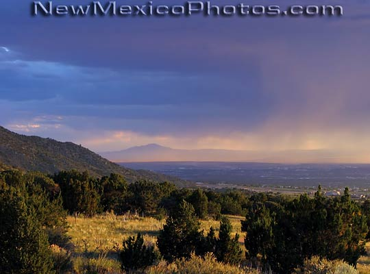 late afternoon summer storm moves into Elena Gallegos Picnic Area 540x400