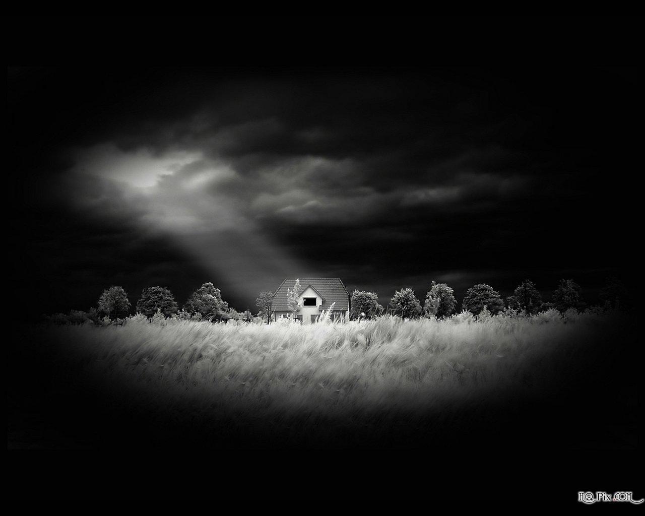 Nature Black and White Wallpaper   Webgranth 2015 1280x1024
