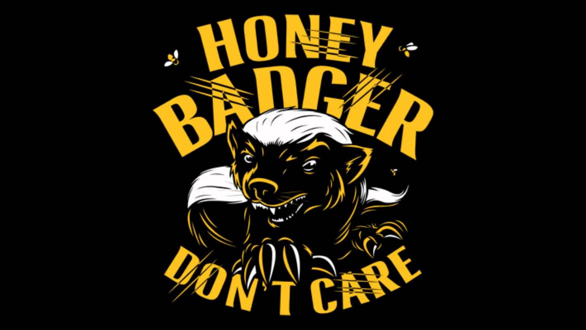 honey badger wallpaper wallpapersafari