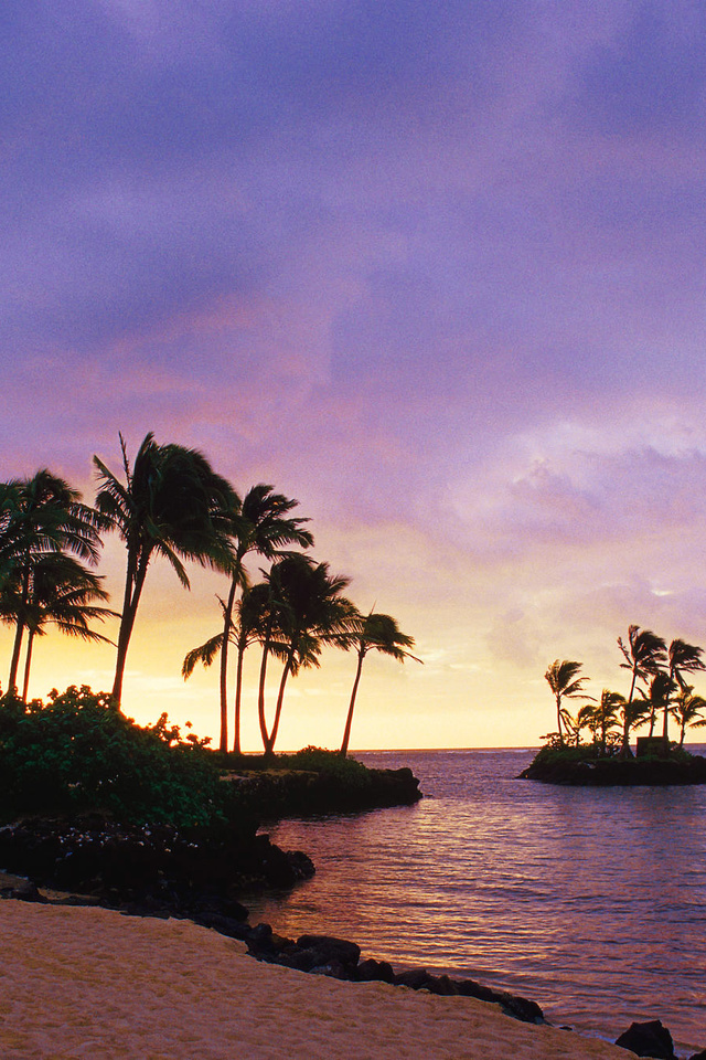 The inspiring wallpaper of the Waialae Beach Honolulu Hawaii 640x960