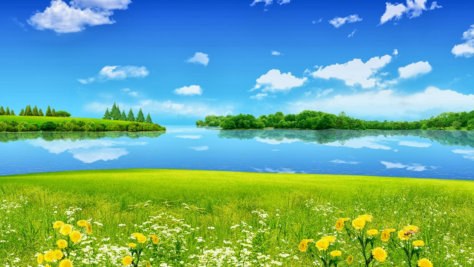 Lake Green Grass Full HD Nature Wallpapers Downloads For Laptop 1600x900