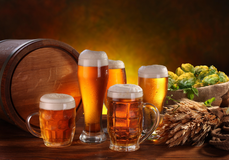 Beer Hops Wallpaper
