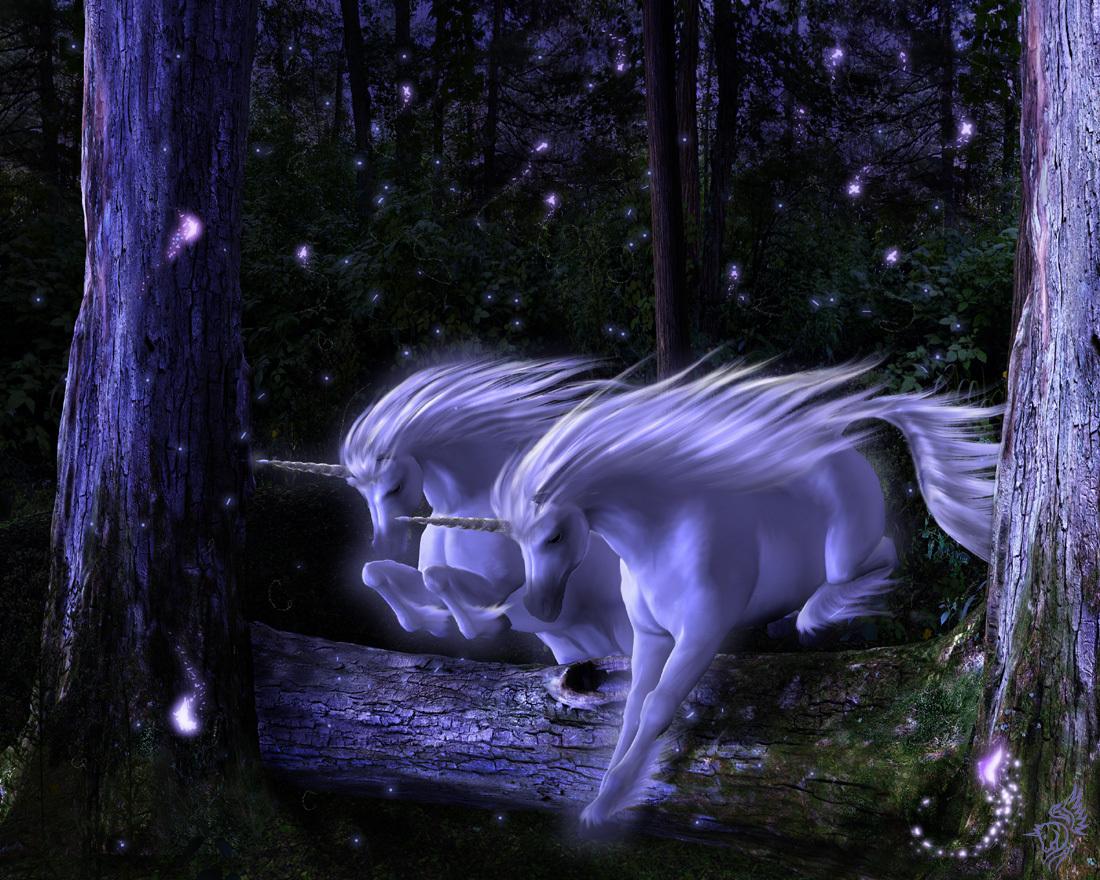 Mystical Unicorn And Pegasus Wallpapersdigital photo 1100x880