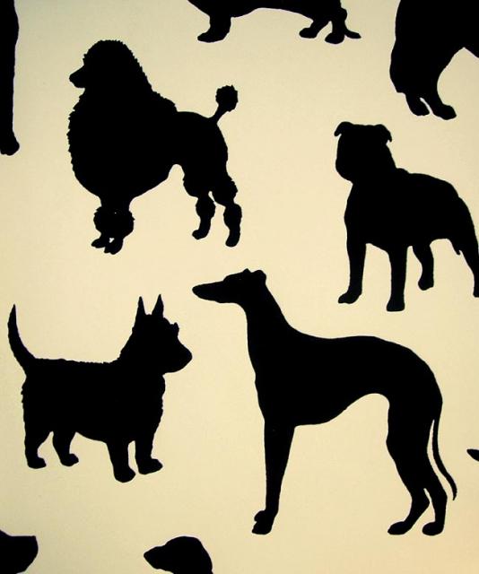 [50+] Best In Show Wallpaper Dogs On WallpaperSafari