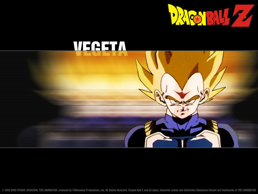 Vegeta   dbz rampage Wallpaper 23498437 1024x768
