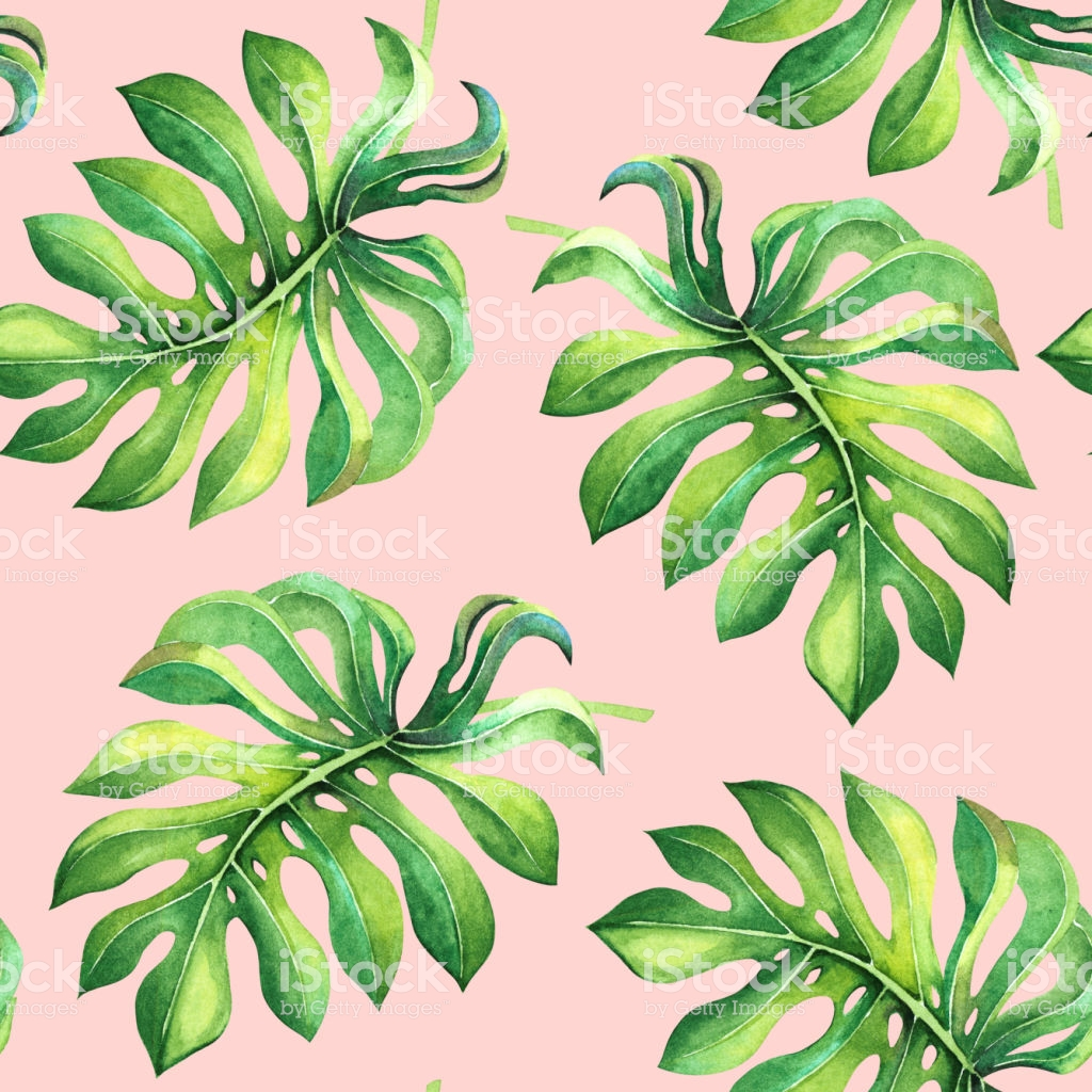 Beautiful Seamless Pattern With Green Tropical Leaves On Pink 1024x1024