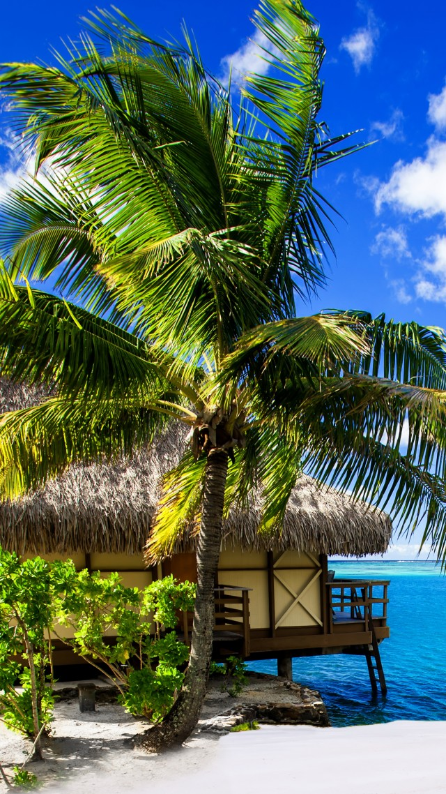 Wallpaper Maldives 4k HD wallpaper holidays vacation travel 640x1138