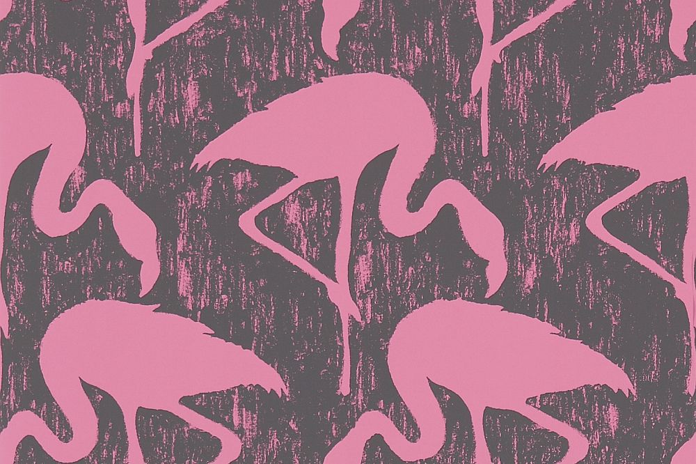 Free Download Flamingos By Sanderson Charcoal Pink Wallpaper