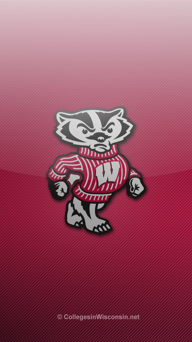 Wisconsin Badger Wallpaper Wallpapersafari