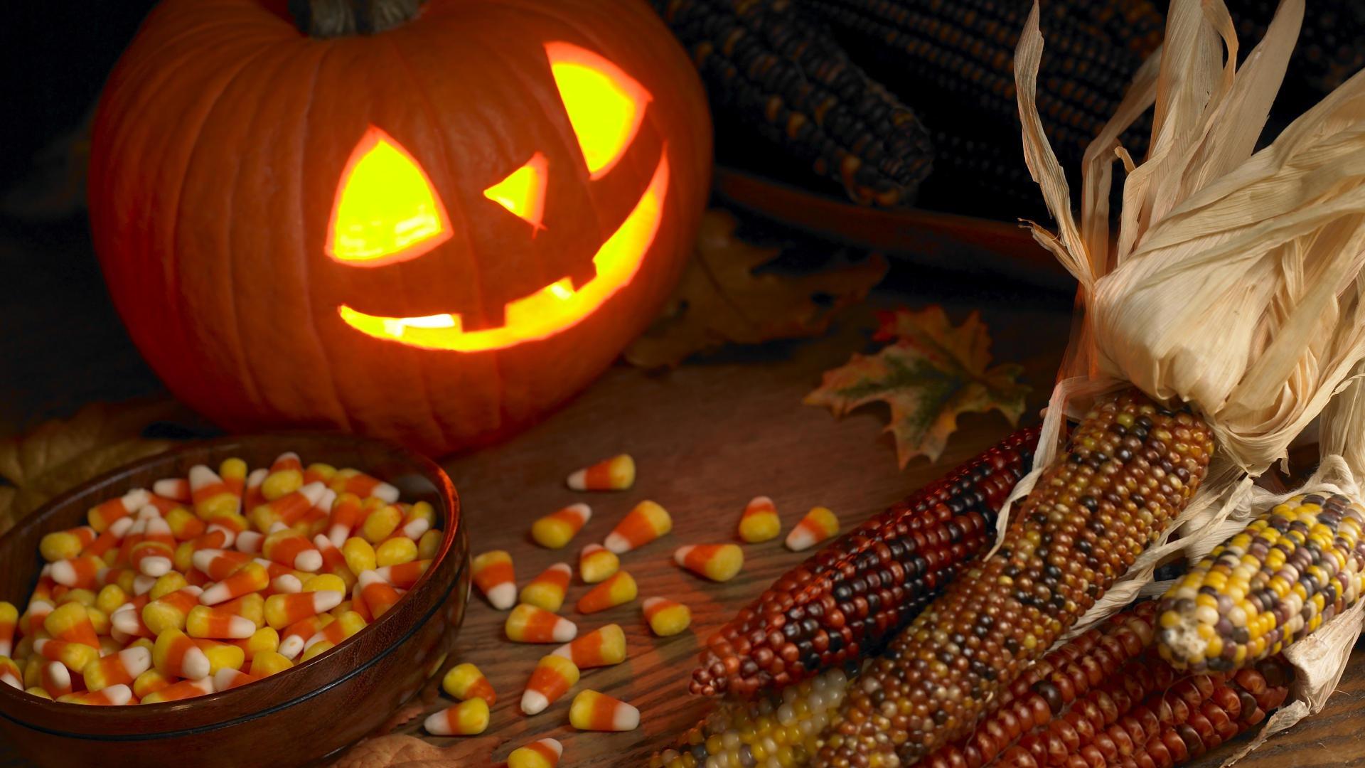 Fall Pumpkin Wallpaper And Screensavers Images 1920x1080
