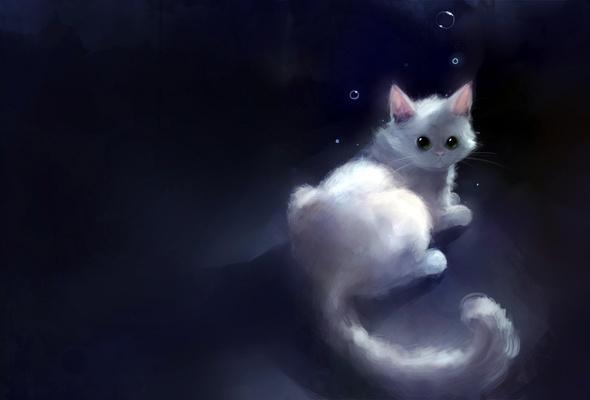Wallpaper cat graphics art dark bubbles desktop wallpaper 3D 590x400