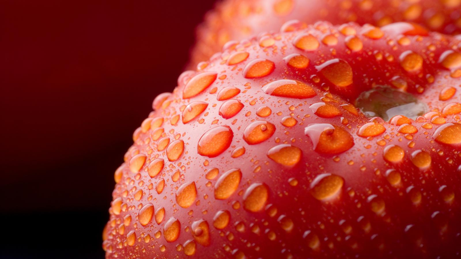and vegetable dowload desktop picture of fruit and vegetable wallpaper 1600x900