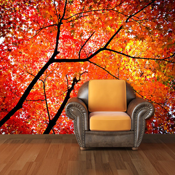 Printed Photo Wall Mural Removable Wallpaper Home Decor fall tree 600x600