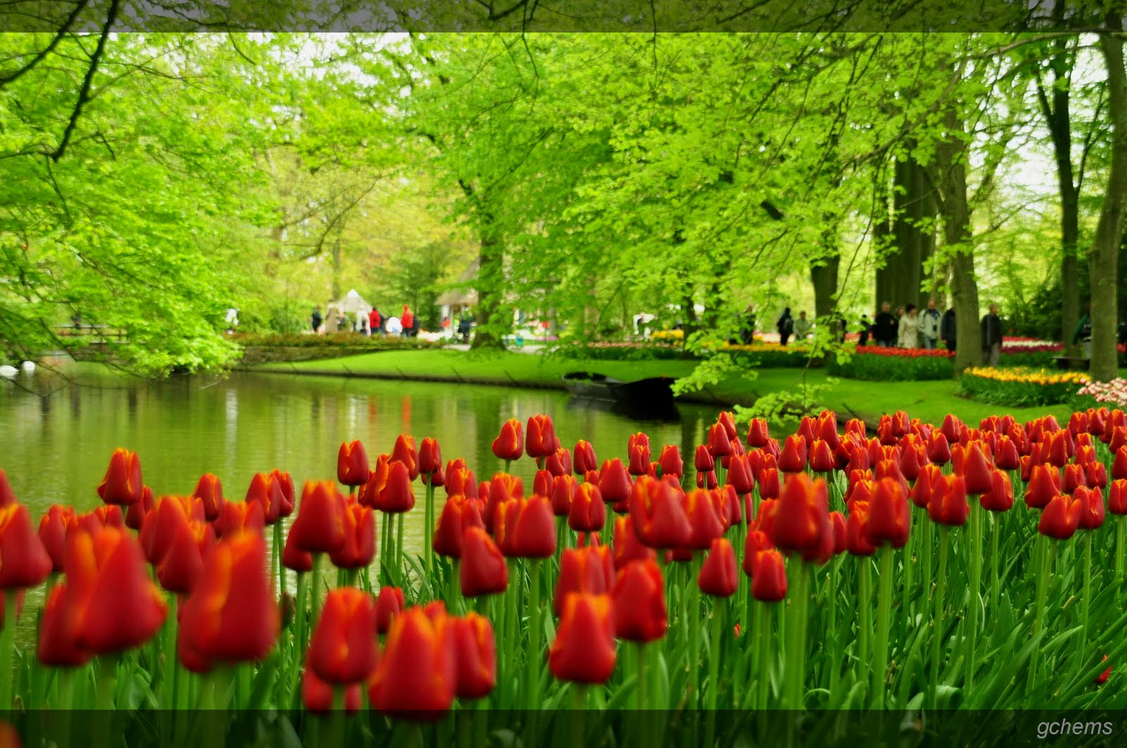 [46+] HD Garden Wallpaper On WallpaperSafari