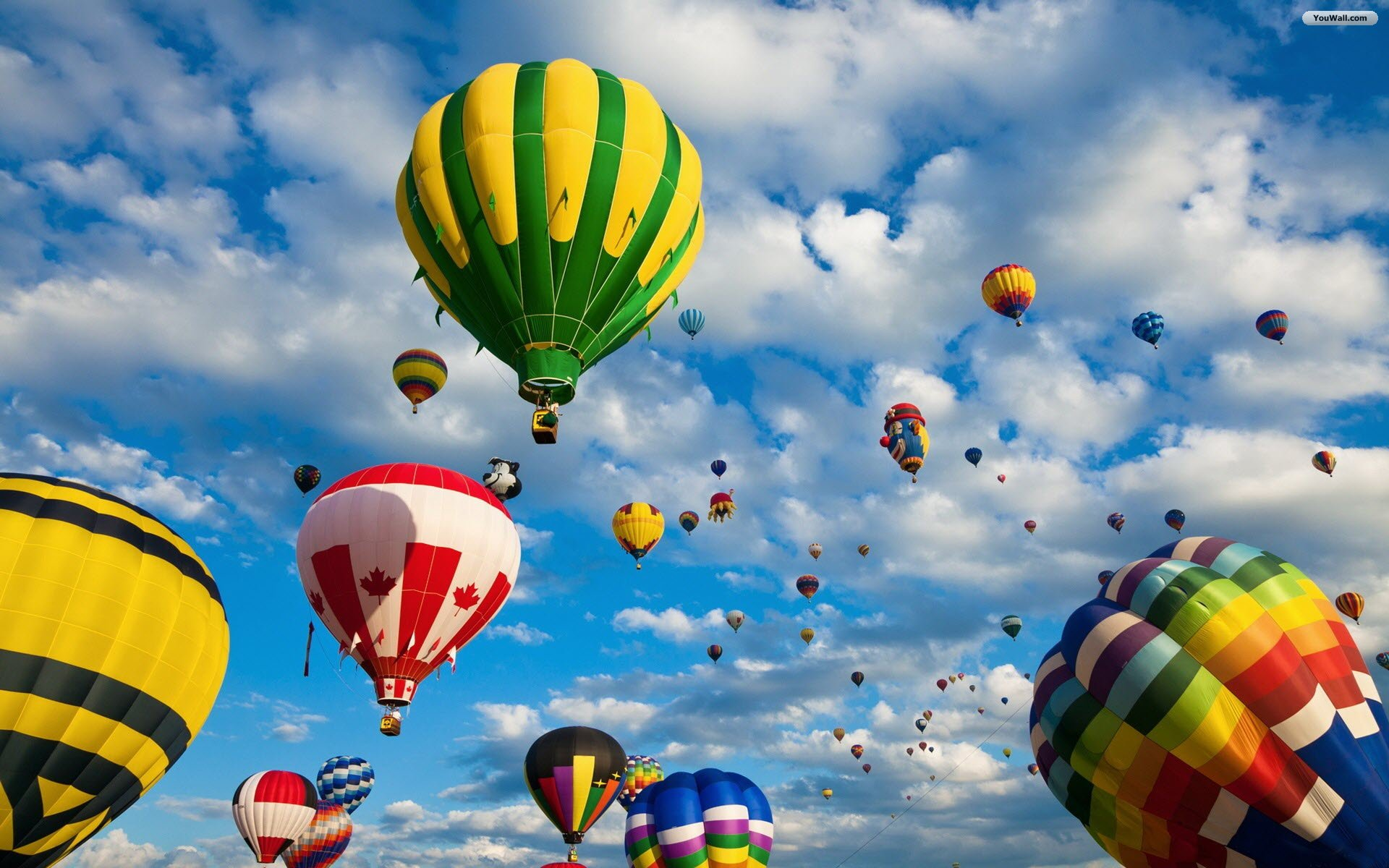 Free Download Hot Air Balloons Wallpaper Wallpaperwallpapersfree