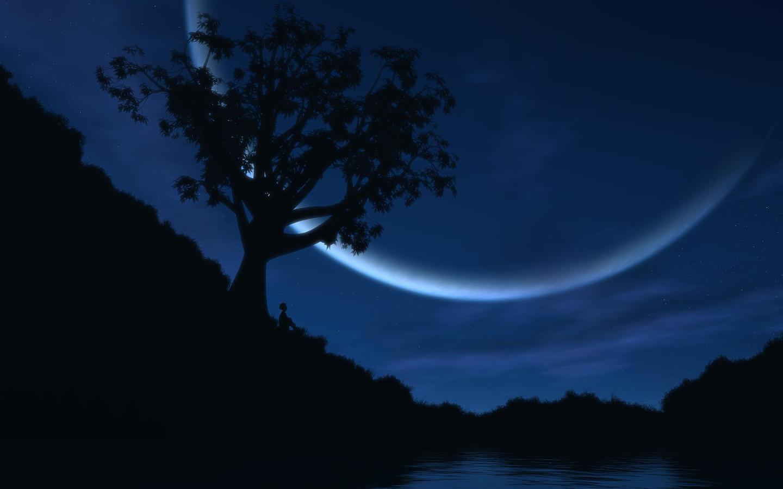 Beautiful night of sky wallpapers 1440x900
