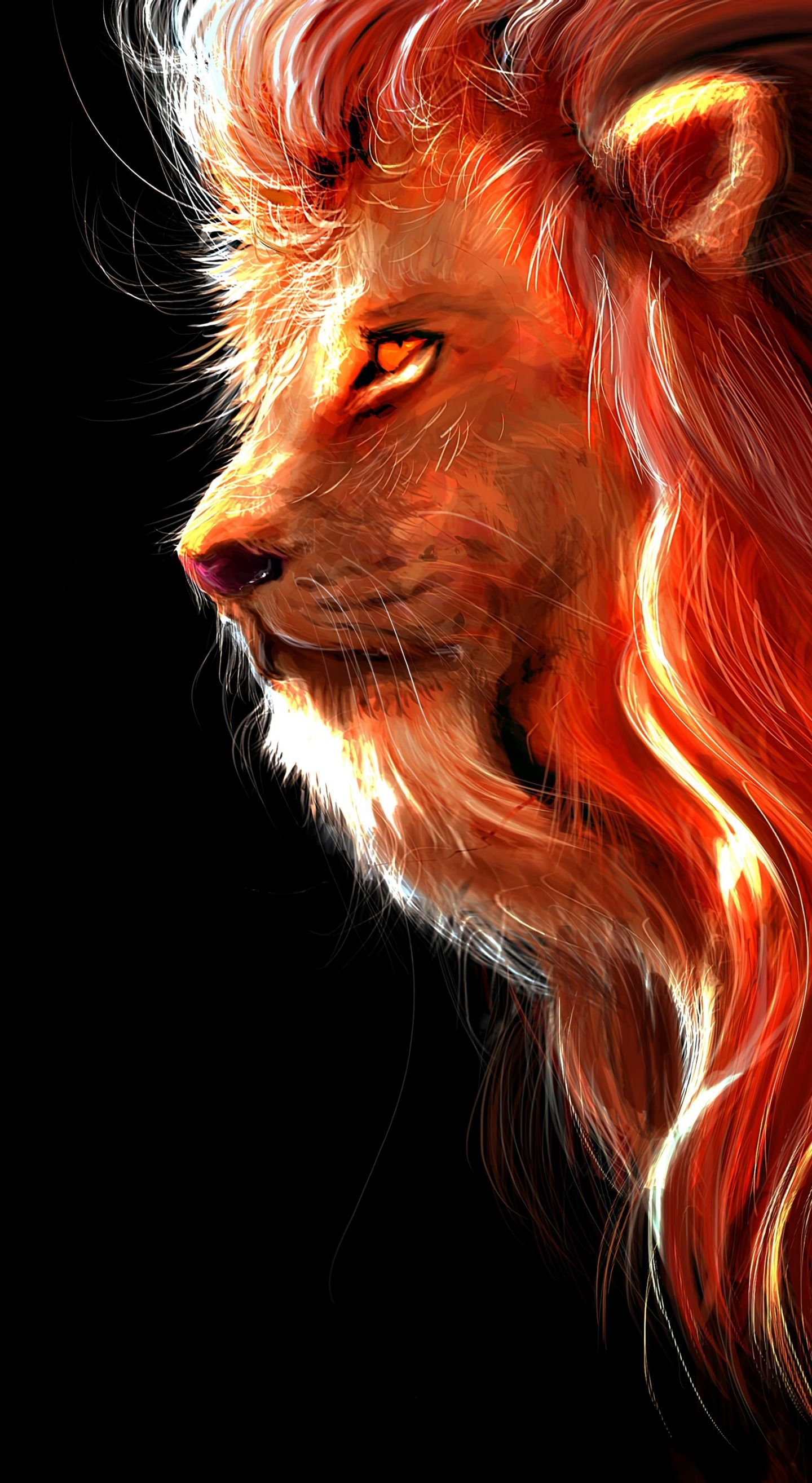 Lion Iphone Backgrounds   KoLPaPer   Awesome HD Wallpapers 1440x2630