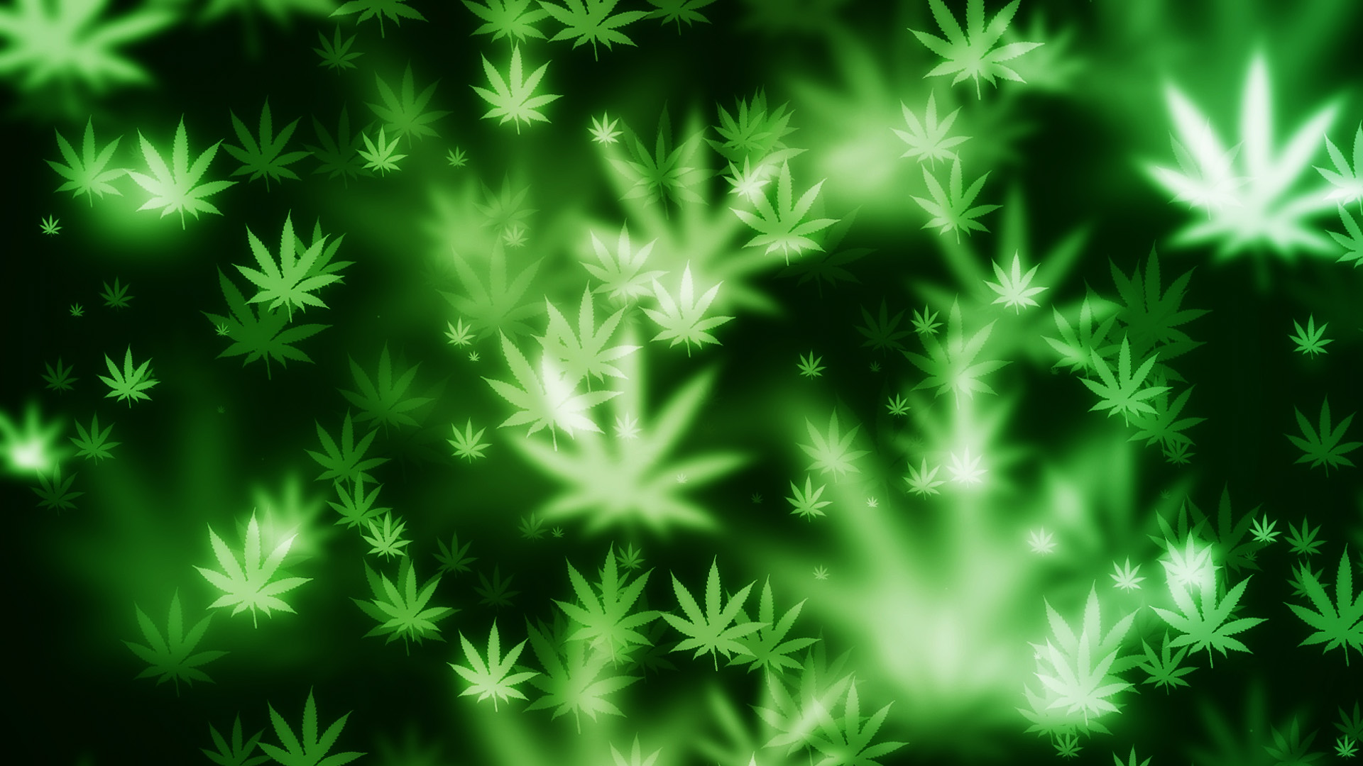 hd pot wallpapers
