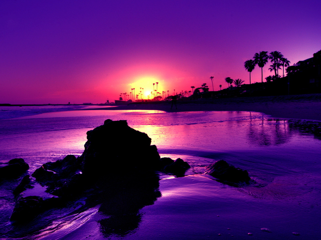 Purple sunset | Wallpapers Stocks