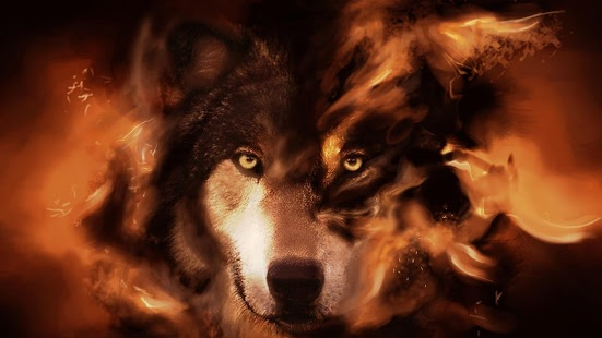 Wolf HD Live Wallpaper Animals APK for Kindle Fire Download ANDROID 551x310