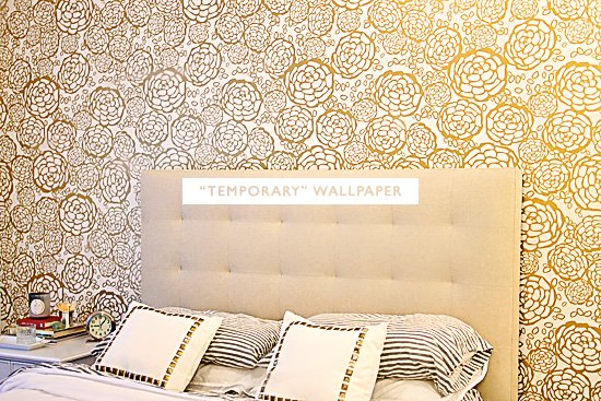 temporary wallpaper Jess Lively 550x367