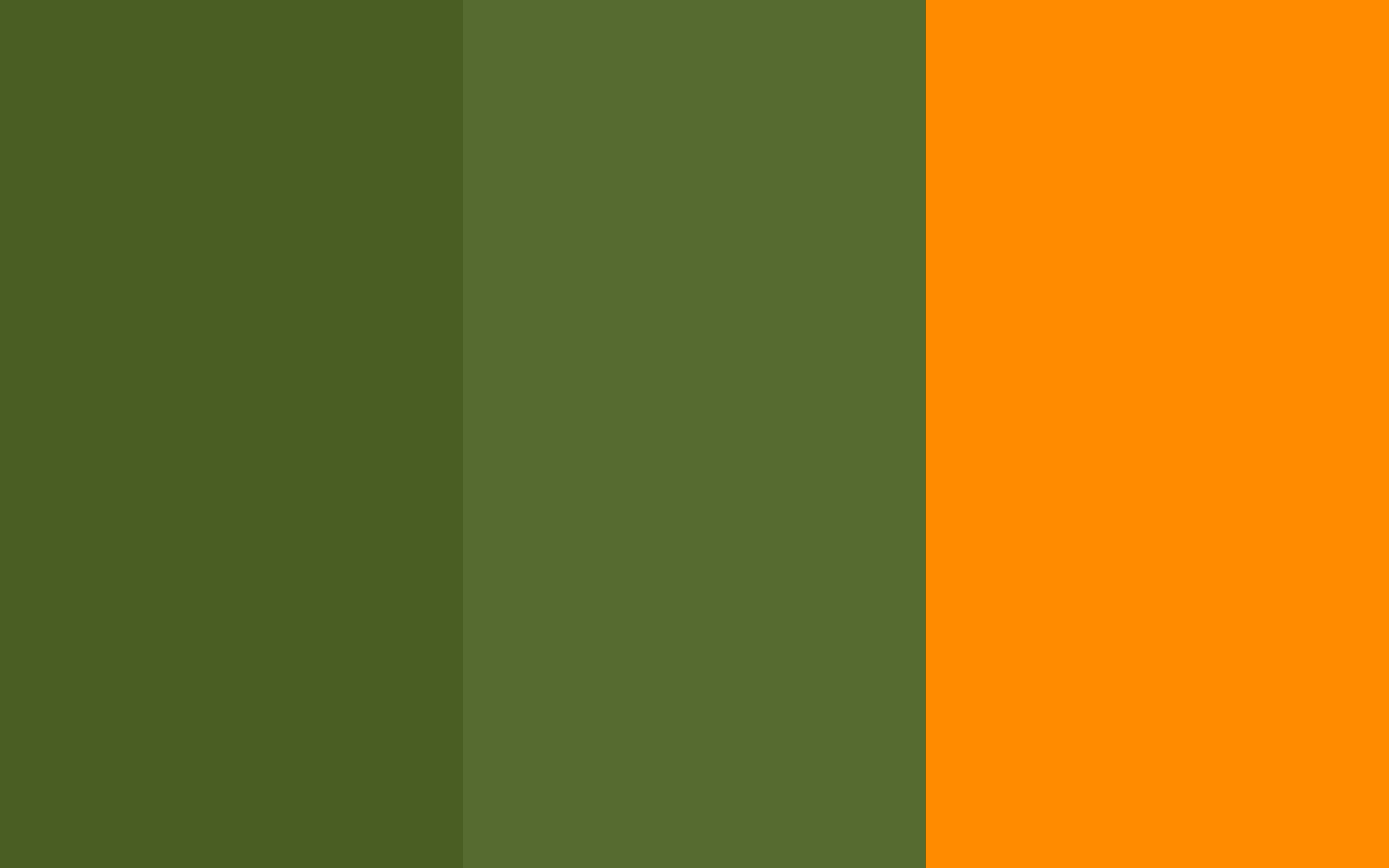 Dark Moss Green Olive Orange Three Color Background 2560x1600